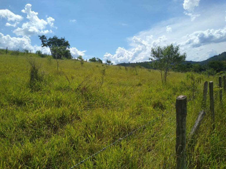 Chácara para formar em Salesópolis