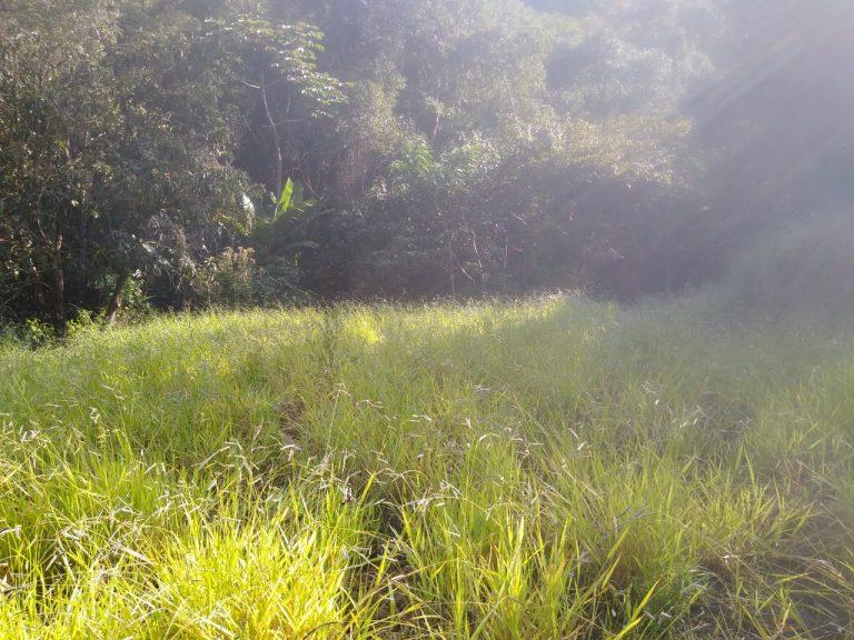 Chácara em Salesópolis com Cachoeira