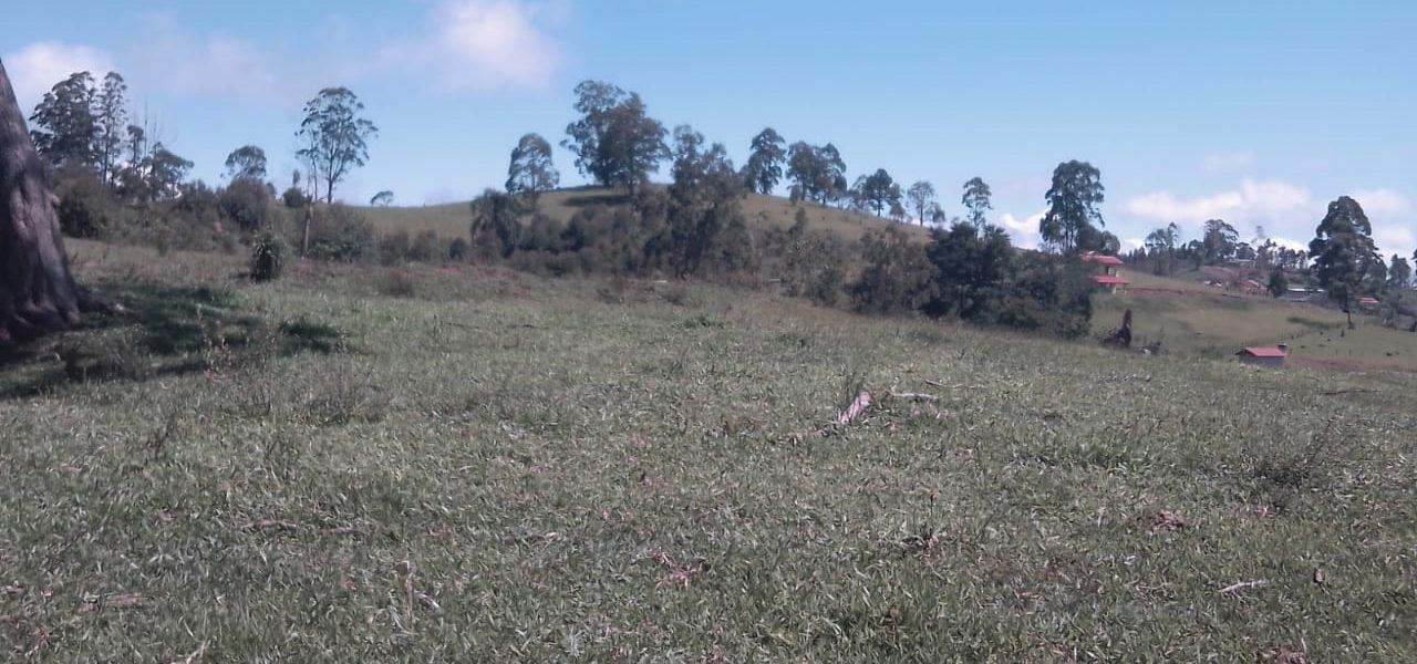 Lote em Salesópolis